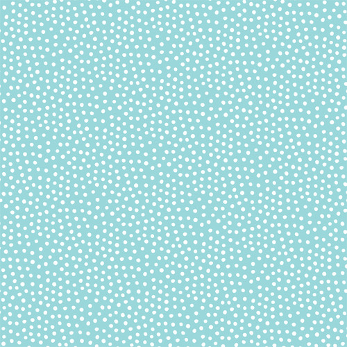 Magical Birthday Collection Birthday Fun 12 x 12 Double-Sided Scrapbook Paper by Echo Park Paper