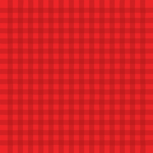 Cupid & Co Collection Happy Valentine's Boxes 12 x 12 Double-Sided Scrapbook Paper by Echo Park Paper
