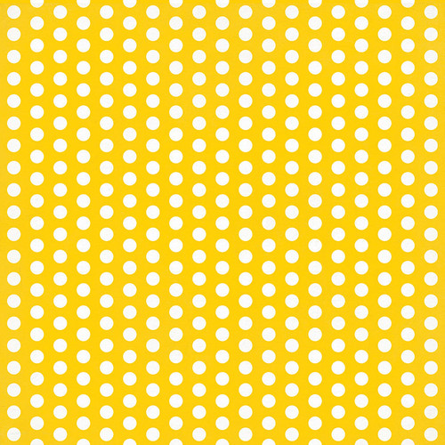 Wicker Lane Collection Our House 12 x 12 Double-Sided Scrapbook Paper by Photo Play Paper