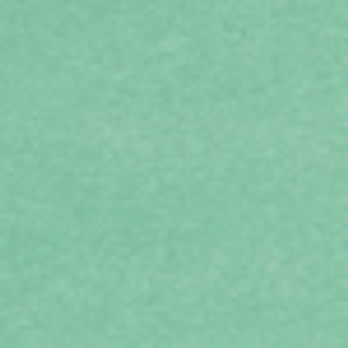 Petallics Spring Larch #10 Shimmer Envelopes by WorldWin Papers - Pkg. of 10