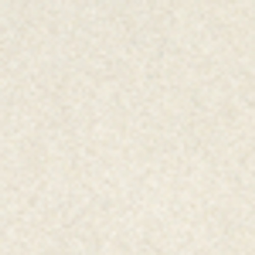 Petallics Bear Grass #10 Shimmer Envelopes by WorldWin Papers - Pkg. of 10
