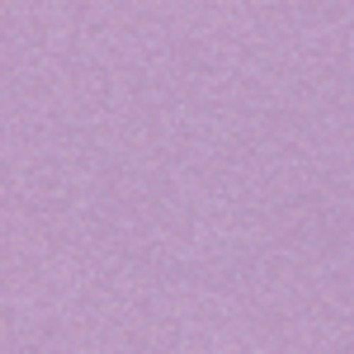 Petallics Alpine Aster #10 Shimmer Envelopes by WorldWin Papers - Pkg. of 10
