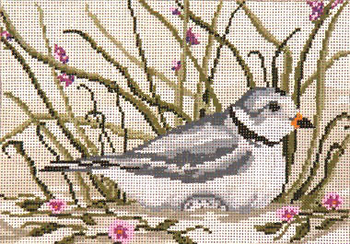 """#1612 Piping Plover 18 Mesh - 7"""" x 5""""  Needle Crossings"""