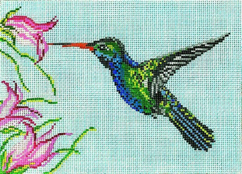 "#1613 Broad Billed Hummingbird 18 Mesh - 7"" x 5"" Needle Crossings"