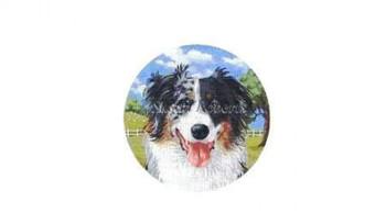 "TTASP238 Australian Shepherd #18 Mesh 6¼"" round Susan Roberts Needlepoint"