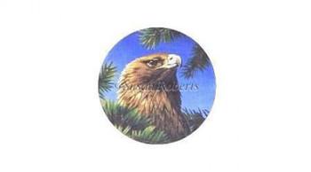 "TTASP318 Golden Eagle #18 Mesh 6 1/4"" round Susan Roberts Needlepoint"