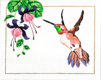M-397 Rufous Hummingbird 10 x  8 18 Mesh Shorebird Studio