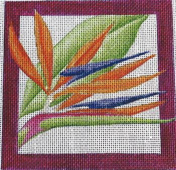 324M Bird of Paradise Square 10 x 10 10 Mesh Jane Nichols Needlepoint