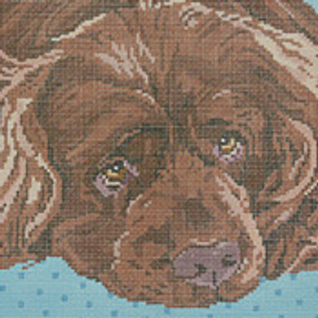 BR403 Barbara Russell Sussex Spaniel