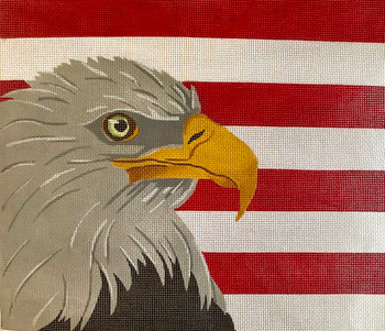 PDG-039 The Point Of It All Eagle/Flag 12 x16 13 Mesh