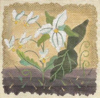182079 Ivory Woods Trillium 5 x 5 18 Mesh  JULIE THOMPSON