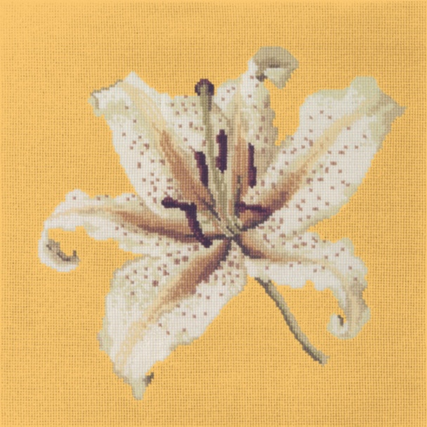 c42b72f84fe91 BL01 Oriental Lily With Sunflower Yellow Background Elizabeth Bradley  Designs - The NeedleArt Closet