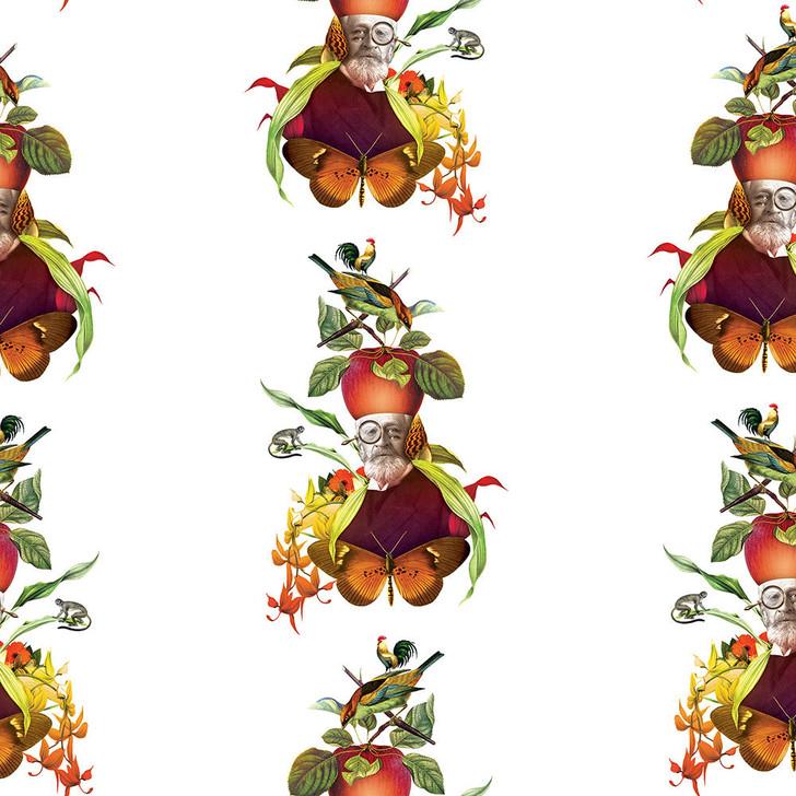 Orbeh Studio Orange Science Is For Everyone Wallpaper