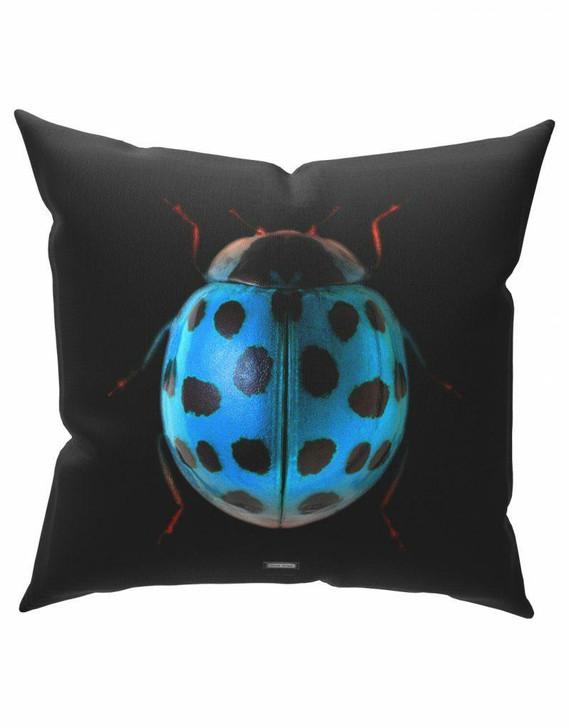 Emanuele Pangrazi Sir Ladybug Cushion