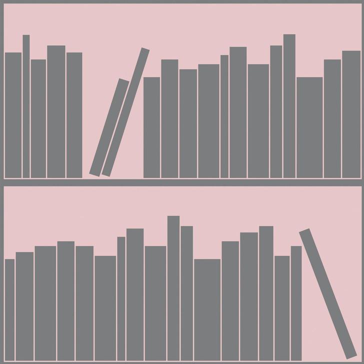 Emanuele Pangrazi Pink and Grey outline bookshelf wallpaper