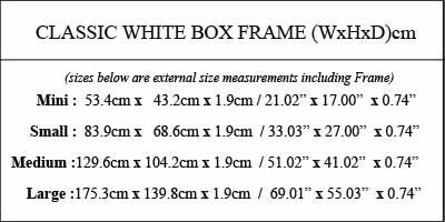 white-box-frame-size-information-2.jpg