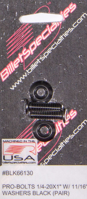 1/4-20 x 1in SS Bolts Black Pair