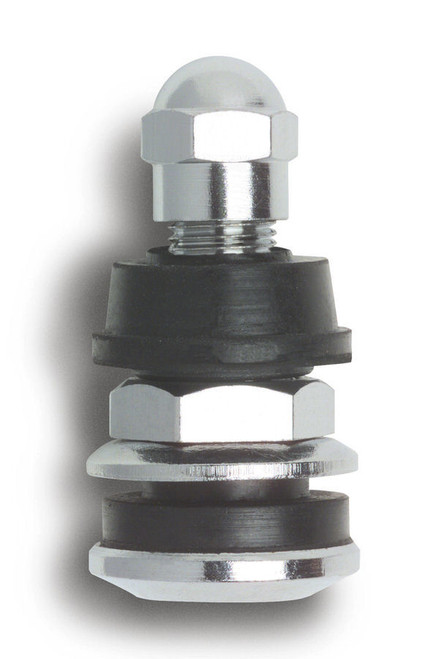 100 Outer Mount Valve Stems