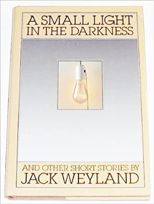 A Small Light in the Darkness: And Other Short Stories (Hardcover)