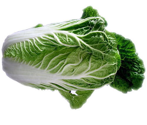 Cabbage Chinese Michihili Non GMO Seeds - Brassica Rapa