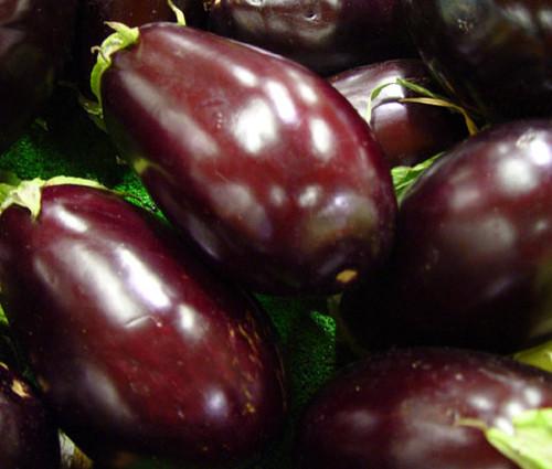 Eggplant Black Beauty Organic Seeds - Solanum Melongena