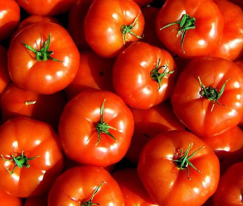 Tomato Marglobe Supreme Non GMO Seeds - Lycopersicon Esculentum