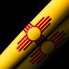 V110 'New Mexico'
