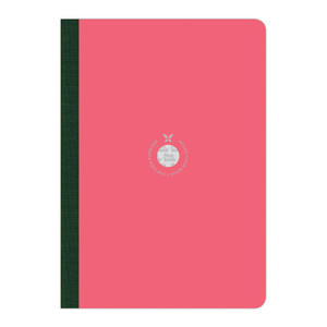Flexbook Smartbook Notebook Large Ruled Pink/Green