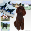Chocolate Poodle Scenic Coasters