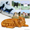 Red Tabby Scenic Coasters