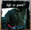 Custom Photo Slate Sign - Black Lab Life is Good