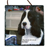 "Custom Photo Slate Sign - English Springer ""Peter"""