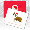 Border Collie Brown & White Christmas Cards