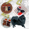 Black Pomeranian Xmas Ornament