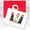 Lab Trio, Adults Christmas Cards