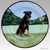 Gallery Style Hand Painted 11 inch Plate - Doberman