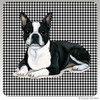 Boston Terrier Lying Down Houndzstooth Coasters