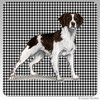 Liver and White Brittany Houndzstooth Coasters