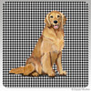 Smiling Golden Retriever Houndzstooth Coasters