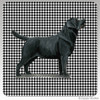 Black Lab Standing Houndzstooth Coasters