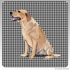 Yellow Lab Sitting Houndzstooth Coasters