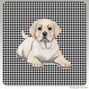 Yellow Lab Puppy Houndzstooth Coasters