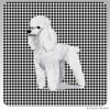 White Poodle Houndzstooth Coasters