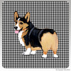 Tri Color Pembroke Welsh Corgi Houndzstooth Coasters