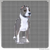 Standing Pit Bull Houndzstooth Coasters