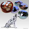 Dalmatian Bisque Coaster Set