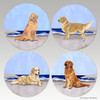 Mixed set of Goldens on the Beach bisque coasters.