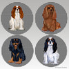 Mixed set of 4 Cavaliers on houndstooth bisque coasters.