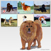 Chow Chow Scenic Mouse Pad
