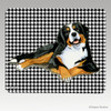 Berner Lying Down Houndstooth Mouse Pad